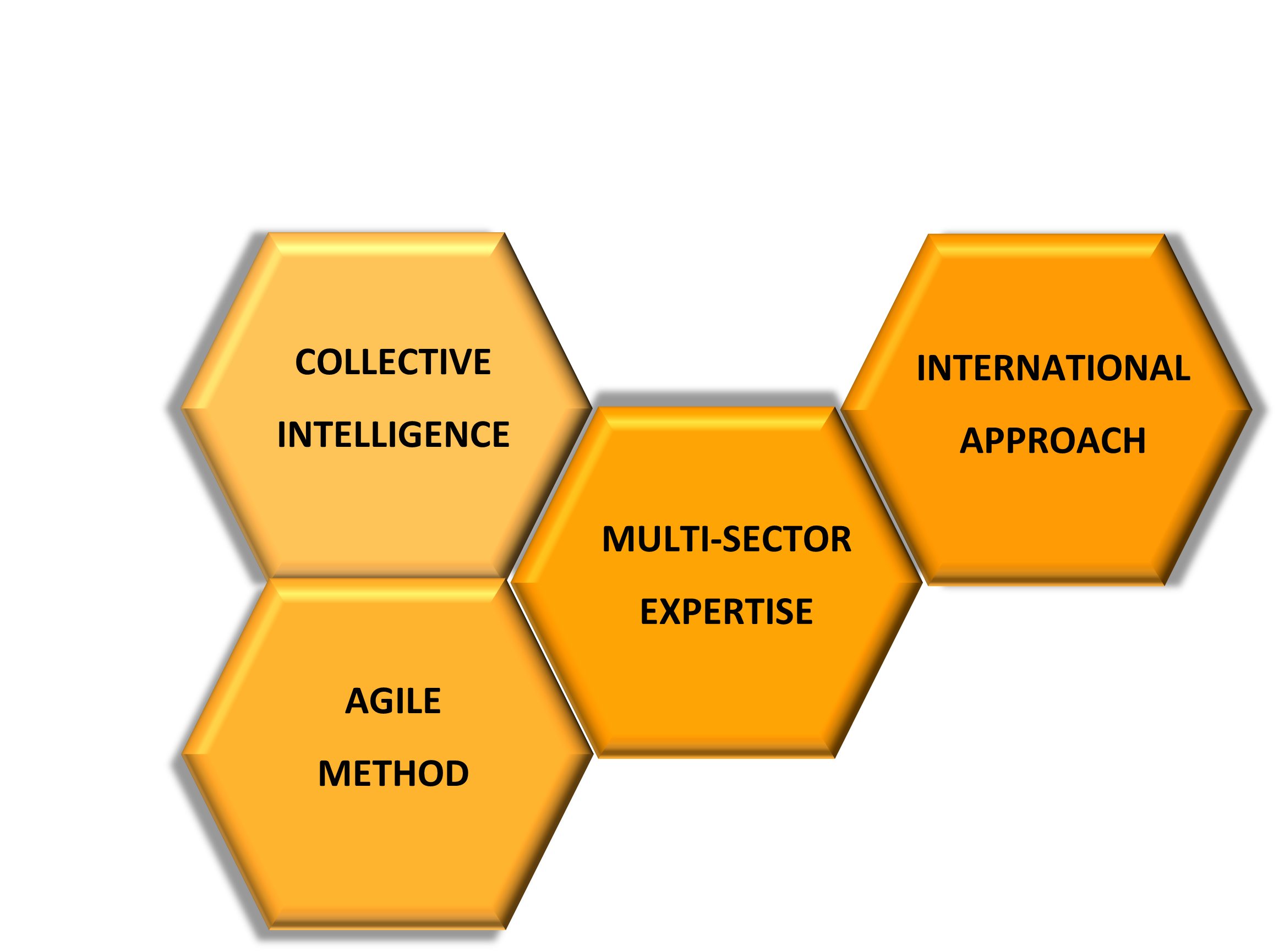 Intelligence collective,                             Méthodologie agile, expertise multisectorielle, développement international